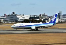 カッチーさんが、伊丹空港で撮影した全日空 737-881の航空フォト(飛行機 写真・画像)
