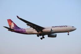 デルさんが、成田国際空港で撮影したハワイアン航空 A330-243の航空フォト(飛行機 写真・画像)