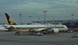 オキシドールさんが、シンガポール・チャンギ国際空港で撮影したシンガポール航空 787-10の航空フォト(飛行機 写真・画像)
