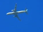 京成本線沿線民(KS3035F)さんが、羽田空港で撮影した全日空 A320-211の航空フォト(飛行機 写真・画像)