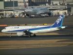 ヒコーキグモさんが、羽田空港で撮影した全日空 A320-211の航空フォト(飛行機 写真・画像)