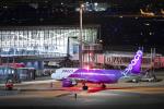 SGR RT 改さんが、羽田空港で撮影したピーチ A320-214の航空フォト(飛行機 写真・画像)