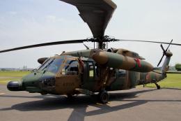 石鎚さんが、霞ヶ浦飛行場で撮影した陸上自衛隊 UH-60JAの航空フォト(飛行機 写真・画像)