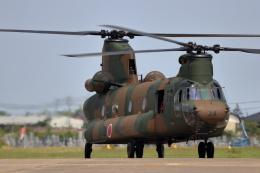 石鎚さんが、霞ヶ浦飛行場で撮影した陸上自衛隊 CH-47Jの航空フォト(飛行機 写真・画像)