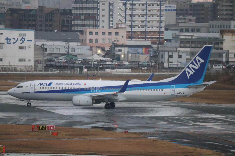 さかいさんの全日空 Boeing 737-800 (JA66AN) 航空フォト