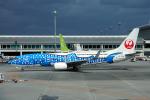 ちゃぽんさんが、那覇空港で撮影した日本トランスオーシャン航空 737-8Q3の航空フォト(飛行機 写真・画像)