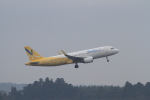 TAK_HND_NRTさんが、成田国際空港で撮影したバニラエア A320-214の航空フォト(飛行機 写真・画像)