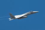 TOM310さんが、新田原基地で撮影した航空自衛隊 F-15J Eagleの航空フォト(飛行機 写真・画像)