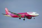 ちゃぽんさんが、那覇空港で撮影したピーチ A320-214の航空フォト(飛行機 写真・画像)