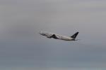 TAK_HND_NRTさんが、羽田空港で撮影した全日空 777-281の航空フォト(飛行機 写真・画像)