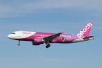 ゴンタさんが、新潟空港で撮影したピーチ A320-214の航空フォト(飛行機 写真・画像)