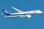 Tomo-Papaさんが、羽田空港で撮影した全日空 787-8 Dreamlinerの航空フォト(飛行機 写真・画像)