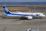 キイロイトリさんが、羽田空港で撮影した全日空 787-8 Dreamlinerの航空フォト(飛行機 写真・画像)