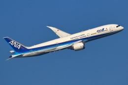 takaRJNSさんが、羽田空港で撮影した全日空 787-9の航空フォト(飛行機 写真・画像)