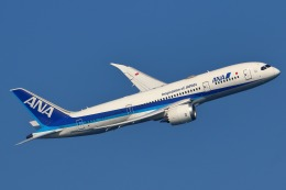 takaRJNSさんが、羽田空港で撮影した全日空 787-8 Dreamlinerの航空フォト(飛行機 写真・画像)