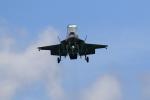★azusa★さんが、シンガポール・チャンギ国際空港で撮影したアメリカ海兵隊 F-35B Lightning IIの航空フォト(飛行機 写真・画像)
