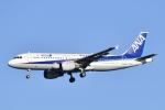けーけーぜろよんさんが、羽田空港で撮影した全日空 A320-211の航空フォト(飛行機 写真・画像)