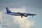N.Tさんが、羽田空港で撮影した全日空 A320-211の航空フォト(飛行機 写真・画像)