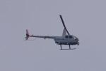 Timothyさんが、成田国際空港で撮影したディーエイチシー R44 Raven II Newscopterの航空フォト(飛行機 写真・画像)