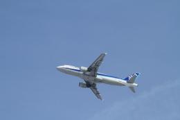 TAK_HND_NRTさんが、新千歳空港で撮影した全日空 A320-211の航空フォト(飛行機 写真・画像)