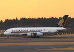 ふじいあきらさんが、成田国際空港で撮影したシンガポール航空 A380-841の航空フォト(写真)