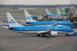 JA8037さんが、アムステルダム・スキポール国際空港で撮影したKLMオランダ航空 737-8K2の航空フォト(飛行機 写真・画像)