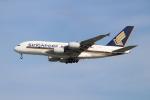 OMAさんが、シンガポール・チャンギ国際空港で撮影したシンガポール航空 A380-841の航空フォト(飛行機 写真・画像)