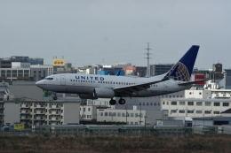 どんちんさんが、福岡空港で撮影したユナイテッド航空 737-724の航空フォト(飛行機 写真・画像)