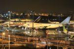 スポット110さんが、羽田空港で撮影したカリッタ エア 747-4B5F/SCDの航空フォト(飛行機 写真・画像)