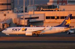 KAZKAZさんが、羽田空港で撮影したスカイマーク 737-8HXの航空フォト(飛行機 写真・画像)