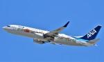 鉄バスさんが、伊丹空港で撮影した全日空 737-881の航空フォト(飛行機 写真・画像)