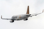 こうきさんが、函館空港で撮影したタイガーエア台湾 A320-232の航空フォト(飛行機 写真・画像)