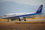 サボリーマンさんが、岩国空港で撮影した全日空 A320-211の航空フォト(飛行機 写真・画像)