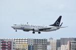 どんちんさんが、福岡空港で撮影した全日空 737-881の航空フォト(飛行機 写真・画像)