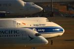 Wasawasa-isaoさんが、中部国際空港で撮影したヴォルガ・ドニエプル航空 An-124-100 Ruslanの航空フォト(飛行機 写真・画像)