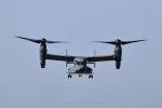 石鎚さんが、三沢飛行場で撮影したアメリカ空軍 CV-22Bの航空フォト(飛行機 写真・画像)