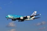 garrettさんが、成田国際空港で撮影した全日空 A380-841の航空フォト(飛行機 写真・画像)