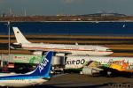 KAZKAZさんが、羽田空港で撮影した全日空 737-881の航空フォト(飛行機 写真・画像)