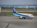 hirohirokinさんが、那覇空港で撮影した全日空 737-781の航空フォト(飛行機 写真・画像)