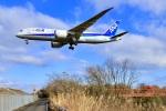 くれないさんが、高松空港で撮影した全日空 787-8 Dreamlinerの航空フォト(飛行機 写真・画像)