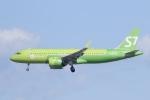ユターさんが、成田国際空港で撮影したS7航空 A320-271Nの航空フォト(飛行機 写真・画像)
