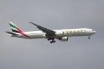 OMAさんが、シンガポール・チャンギ国際空港で撮影したエミレーツ航空 777-31H/ERの航空フォト(飛行機 写真・画像)