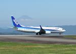 銀苺さんが、静岡空港で撮影した全日空 737-881の航空フォト(飛行機 写真・画像)