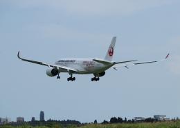 銀苺さんが、成田国際空港で撮影した日本航空 A350-941XWBの航空フォト(飛行機 写真・画像)