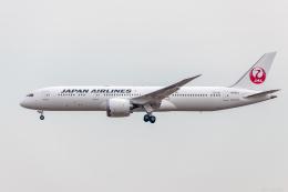 Y-Kenzoさんが、成田国際空港で撮影した日本航空 787-9の航空フォト(飛行機 写真・画像)
