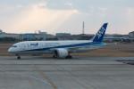 Koenig117さんが、松山空港で撮影した全日空 787-8 Dreamlinerの航空フォト(飛行機 写真・画像)