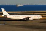 KAZKAZさんが、羽田空港で撮影したドイツ空軍 A340-313Xの航空フォト(飛行機 写真・画像)