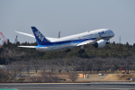 Cスマイルさんが、成田国際空港で撮影した全日空 787-8 Dreamlinerの航空フォト(飛行機 写真・画像)
