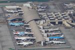masa707さんが、ロサンゼルス国際空港で撮影したルフトハンザドイツ航空 A380-841の航空フォト(飛行機 写真・画像)