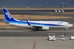 キイロイトリさんが、羽田空港で撮影した全日空 737-881の航空フォト(飛行機 写真・画像)